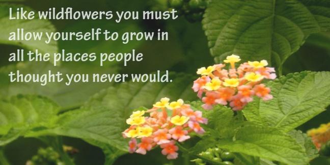 wildflower-quote